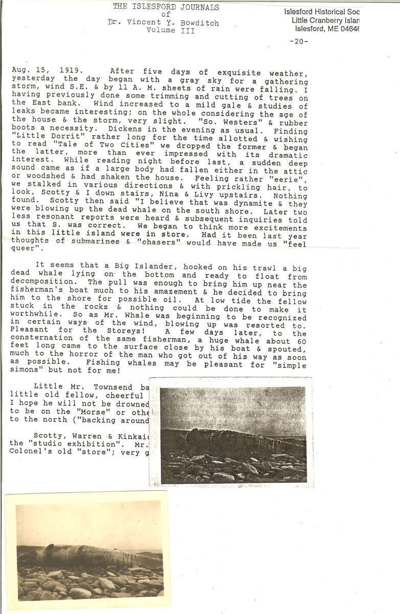 Bowditch Journal account of a beached whale